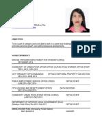 Resume Marinel