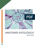 ANATOMÍA PATOLÓGICA FALTA  33 Y 37.pdf