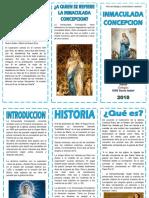 TRIPTICO INMACULADA CONCEPCION.docx