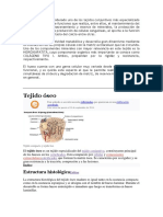 ESTRUCTURA  DEL HUESO.docx