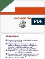Diagnosis Cml