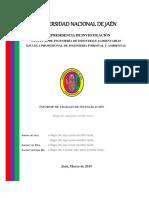 00 Formato proyecto e Informe Trabajo Investigación.docx