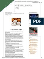 Criação de Galinhas Poedeiras _ Como Produzir Ovos Enriquecidos Com Omega 3 e 6