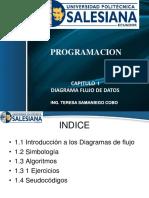 1 Pro Algortimos Nuevo (1)