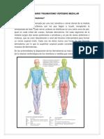Cuestionario Traumatismo Vértebro Medular Terminado