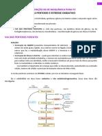 Bioquimica - Transcricao 2.6 via Das Pentoses e Estresse Oxidativo