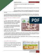 Ciclo Biogeoquímico Do Azoto