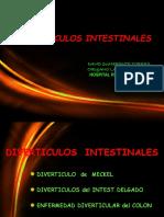 5.Diverticulos Intestinales 2018 (1)