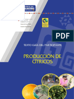 Citricos_Guia_Participante.pdf