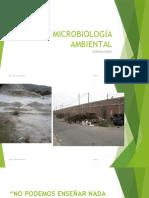 s1-Introduccion a La Microbiología Ambiental (1)