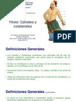 Ok 04a Canales y Colaterales1
