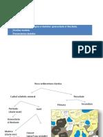 Compozitia Mineralogica a Clastelor- Granoclaste Si Litoclaste.