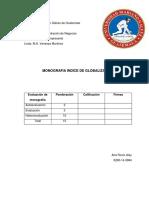 Monografia Indice de Globalizacion (Autoguardado)