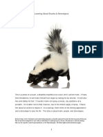 -Skunks-and-Sterotypes 2.pdf