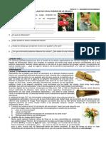 CTA_2do_reforzamiento.pdf