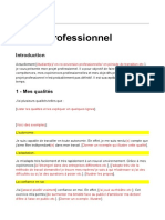 Exemple projet professionnel.doc