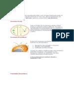 aminoglicosídeos