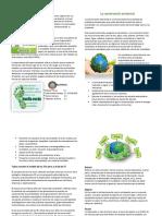 La Conservación Ambiental y Su Relacion Con Las 5Rs