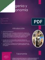 Filogenia y Taxonomía