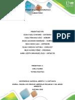 Laboratorio Quimica Inorganica Grupo 3