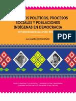 2013 Conceptos politicos, procesos soc y poblacion indg - binacional.pdf