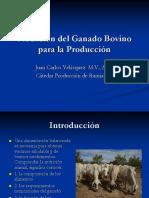 nutrición del ganado bovino para la producción.ppt