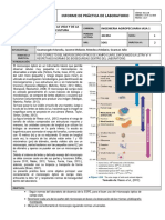 Informe_laboratorio (2)