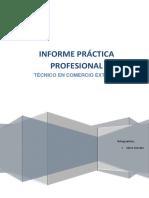 Informe Práctica Profesional Alison Gonzalez (1)