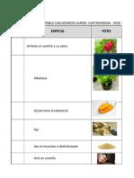 Listado de Hierbas y Aromaticas Excel Tarea