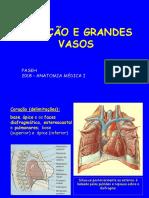 Coração e vasos dos membros.pdf