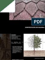 Madera basico.pdf