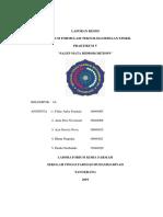 Laporan Resmi Fts Salep Mata Hidrokortison Kelompok 3