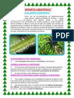 REPORTE CIENTÍFICO.docx