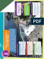 Capitulo 8 Actividades 5to año Solucionario.pdf
