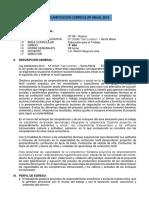 programacion y unidad de Cuarto año-noemi.docx