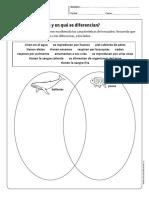 cn_cidelavida_1y2B_N10.pdf