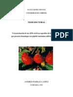 Caracterización de un ADNc de fresa específico de frutos maduros