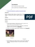 Métodos de separación de pigmentos.docx
