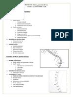 PAUTAS PARA LA ENTREGA DEL PROYECTO DISEÑO DE VIAS (1).docx