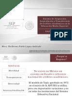 Solicitud Puebla IMSS