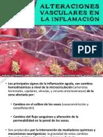 Alteraciones Vasculares en La Inflamacion
