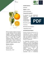 fitomonografia ok.docx