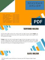 Kelompok 3 Alkil Halida