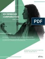 HC Online Mtria Derecho Corporativo