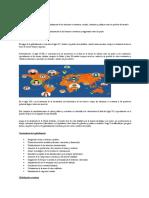 Globalización y su repersusion en el mundo.docx