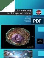 Fraccionamiento y centrifugación celular diapo