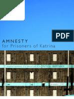 AmnestyReportSummary for Hurricane Katrina