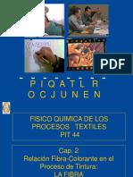 CAP 2 -PIT 44 Relación colorante-Fibra en el Proceso de Tintura- La Fibra.pdf