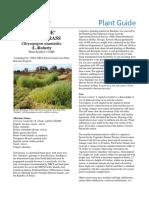 pg_chzi.pdf