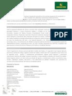 Colección Plata Eol (15150066-67)